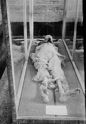 Pharaoh's mummy in Cairo Museum, Library of Congress